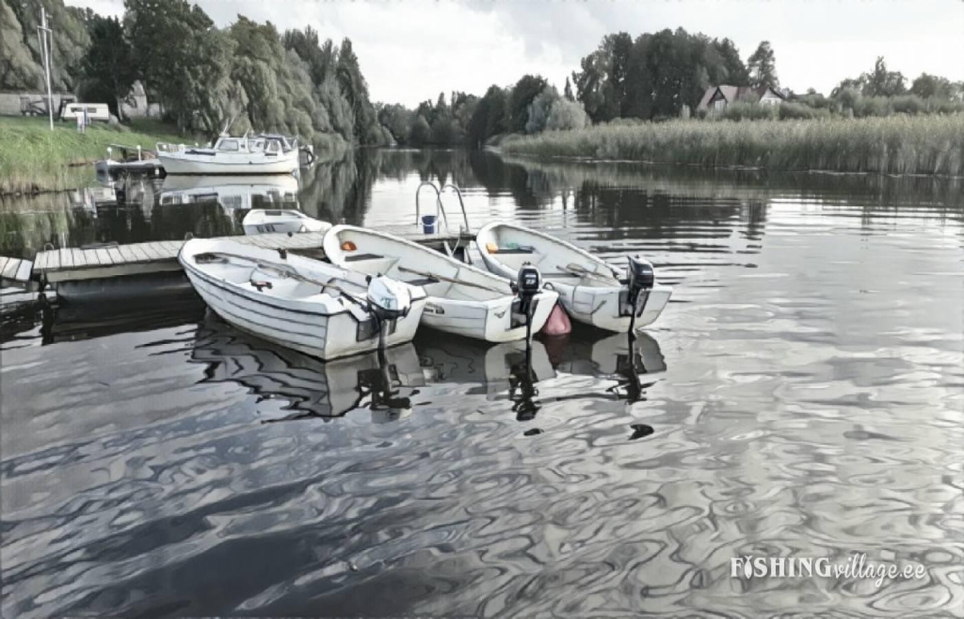 Uus-Sauga 62,Pärnu,Pärnu maakond,Perekond,Uus-Sauga,1035